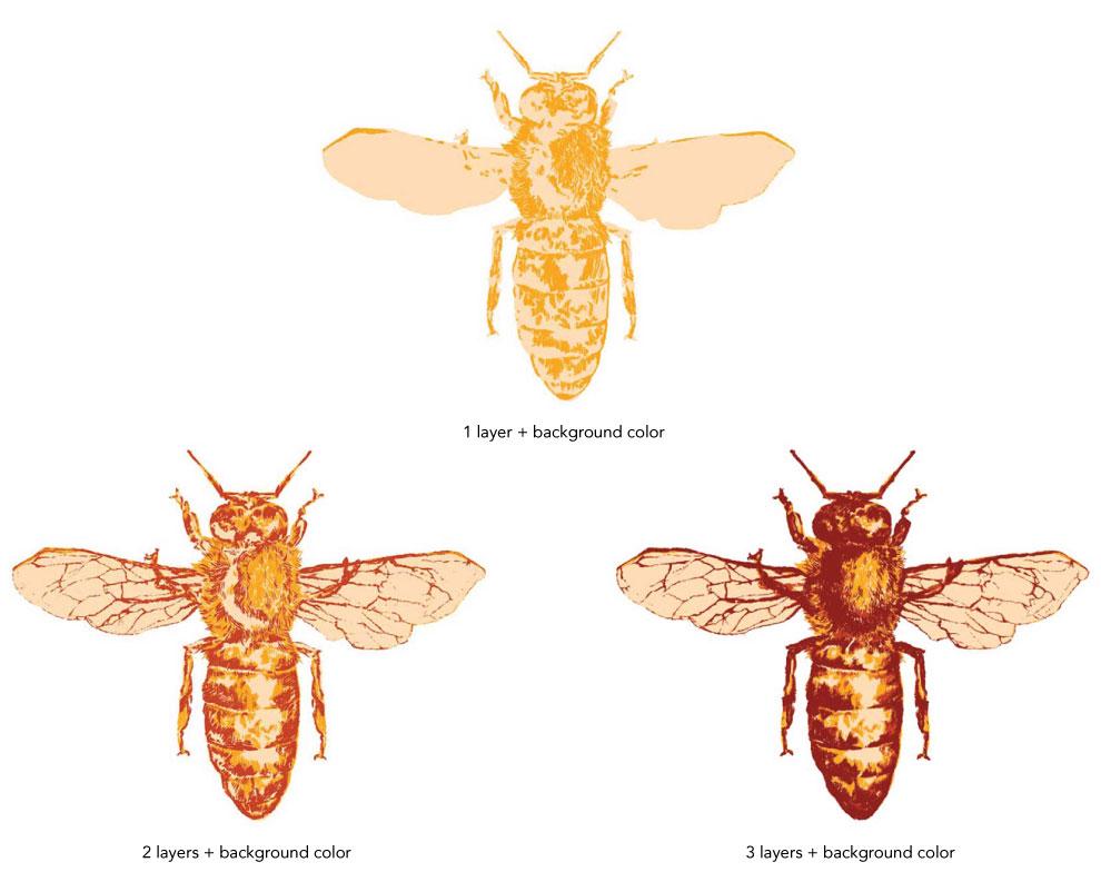 TJO_bees_tri_labeled